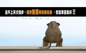 6966861-sitting-elephant-1