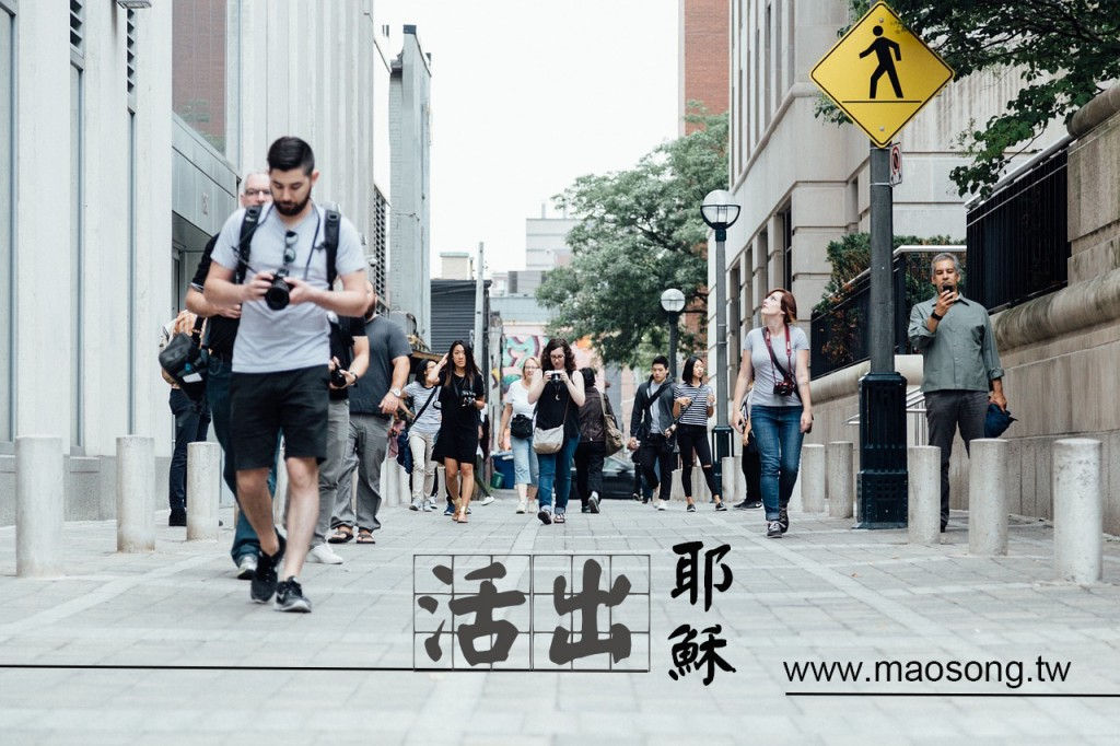pedestrians-918471_1280